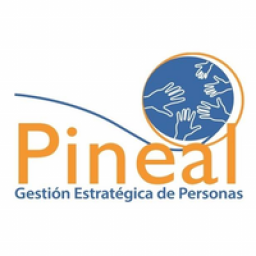 pinealconsultores