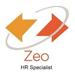 zeoconsulting